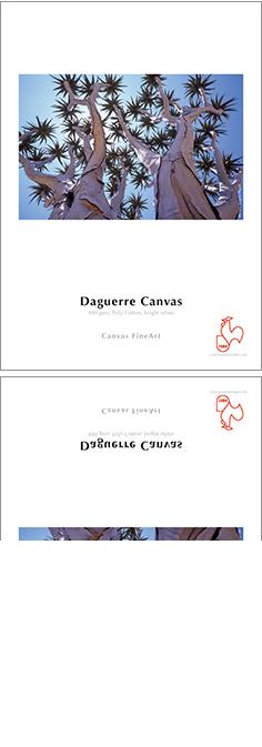 daguerre_canvas_400_gsm_02